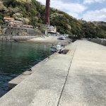 福浦港釣り