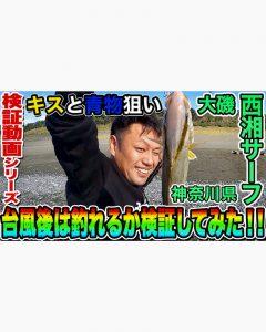 【西湘サーフ (大磯)】台風後にキス、青物が釣れるか検証してみた!!