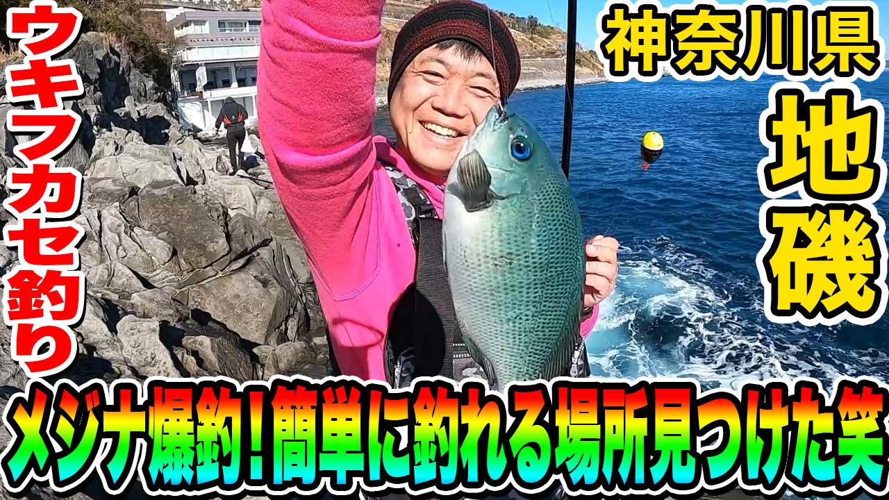 メジナ爆釣!簡単に釣れる場所見つけた笑 in 神奈川県 地磯