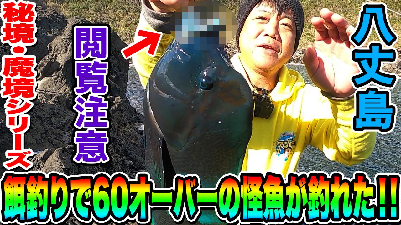 【閲覧注意】八丈島で餌釣りしたら60cmオーバーの怪魚が釣れた!!